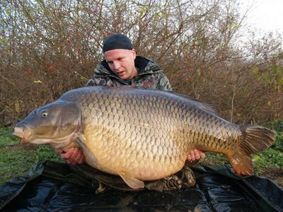 [Image: biggest-carp-caught-3.jpg]