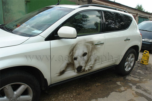 Dog photo on the Nissan Murano