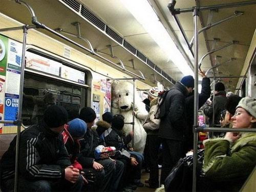 Fake polar bear in Moscow Metro
