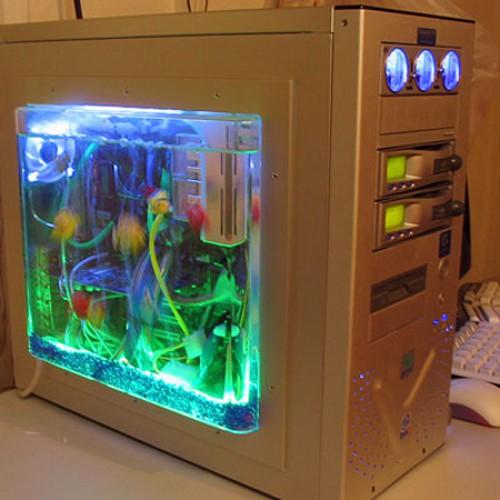 Creative PC case with aquarium