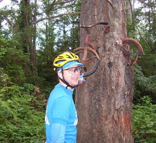 Vashon Island bike in a tree by Kent Peterson