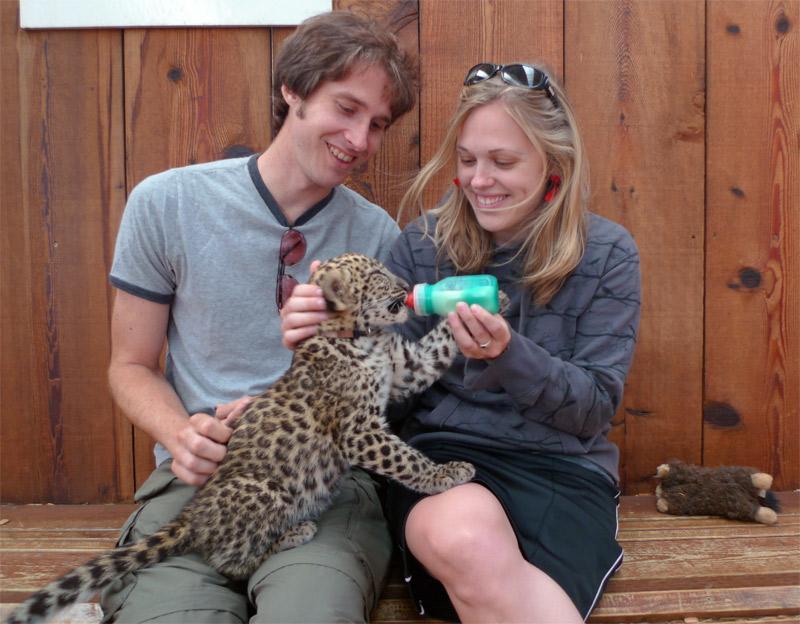14. Feeding a leopard cub. Photo by Andrew Hall