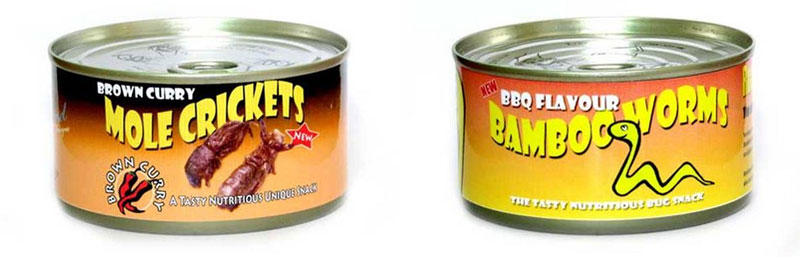 3. Canned crickets and worms