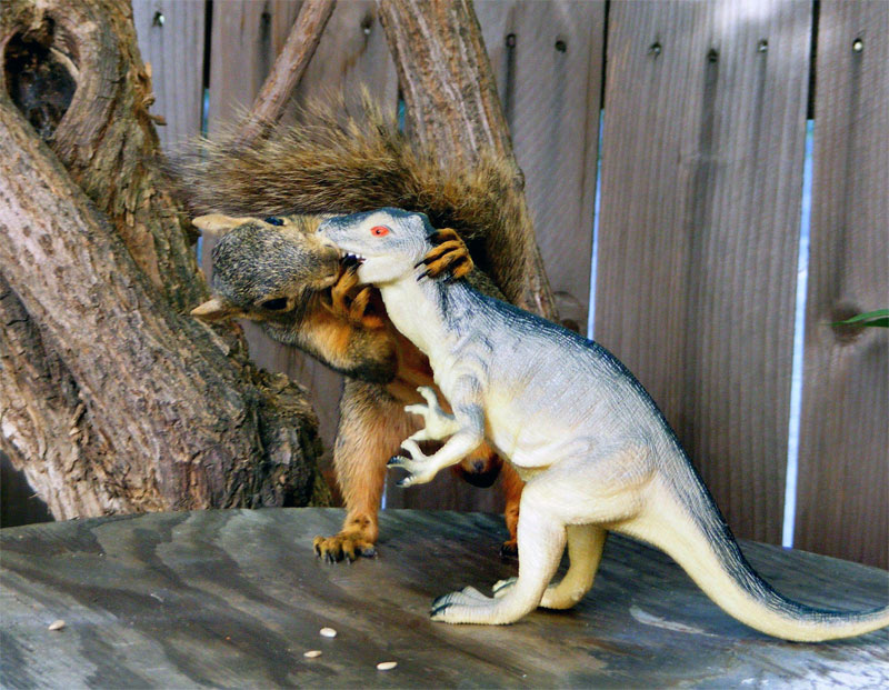 10. Squirrel kissing the dinosaur