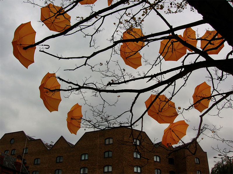 The average London tree is blooming with the bright yellow umbrellas thanks to Sam Spenser. Photo by Jessica Rolland