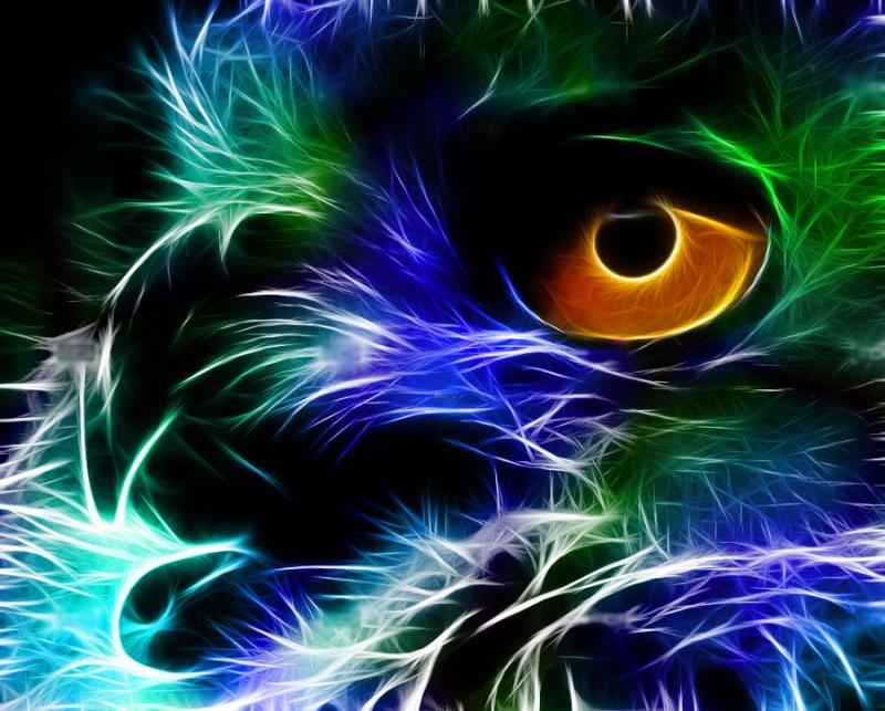 Fractal_Owl_Colour_by_minimoo64