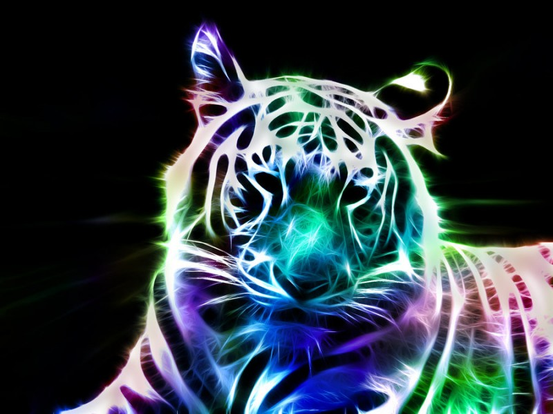 Fractal_White_Tiger_by_minimoo64