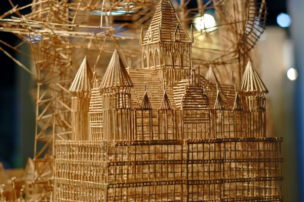 1 persons, 100,000 toothpicks and 35 years