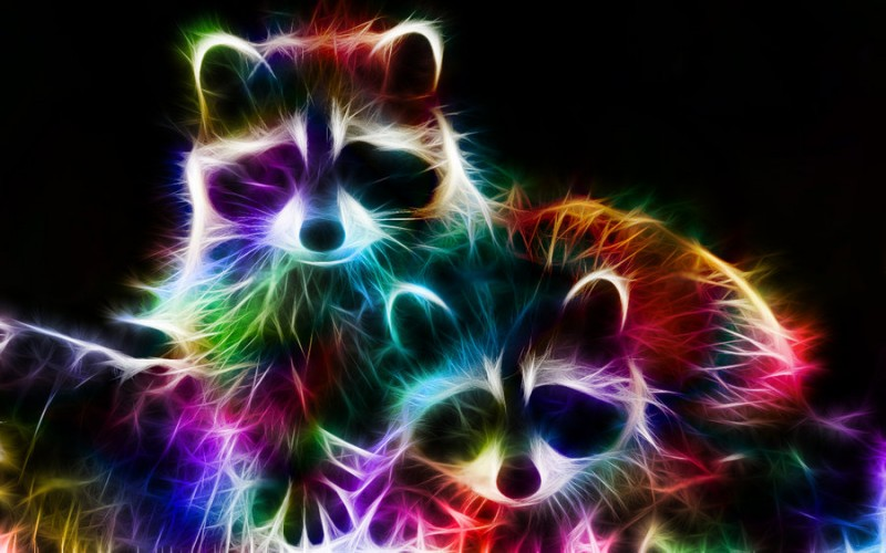fractal_racoons_by_minimoo64-d36w2os