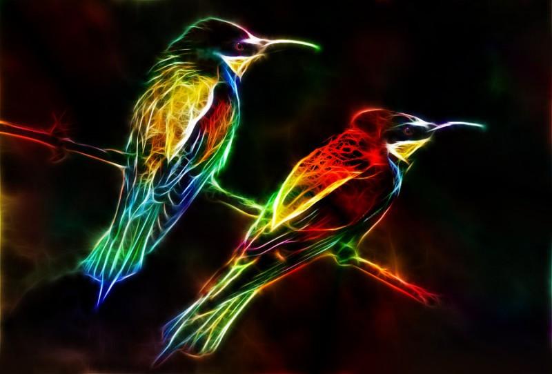 fractalius_birds_by_minimoo64-d5ilq45