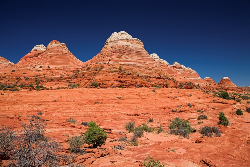 coyote buttes_6