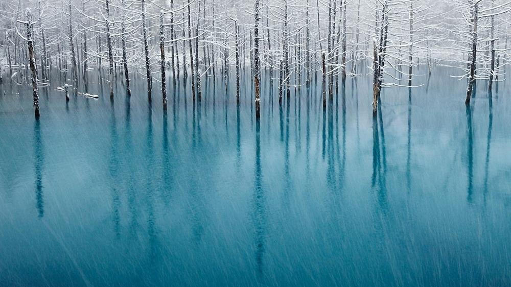 15 amazing winter photos