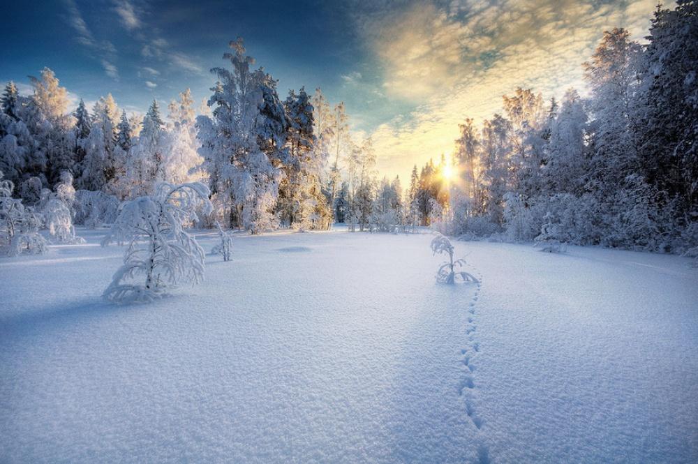 15 amazing winter photosb