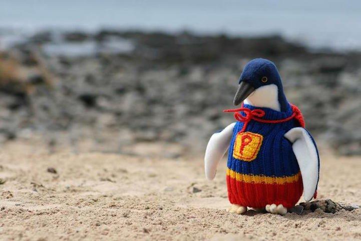 Penguin Sweaters_4