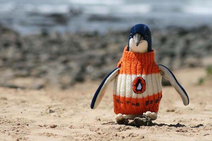 Penguin Sweaters_7