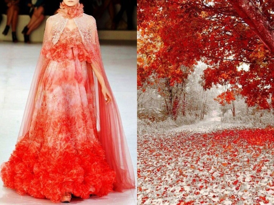 Fashion & Nature