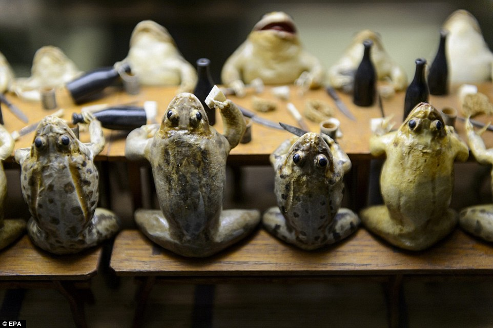 Museum of frogs in Switzerland