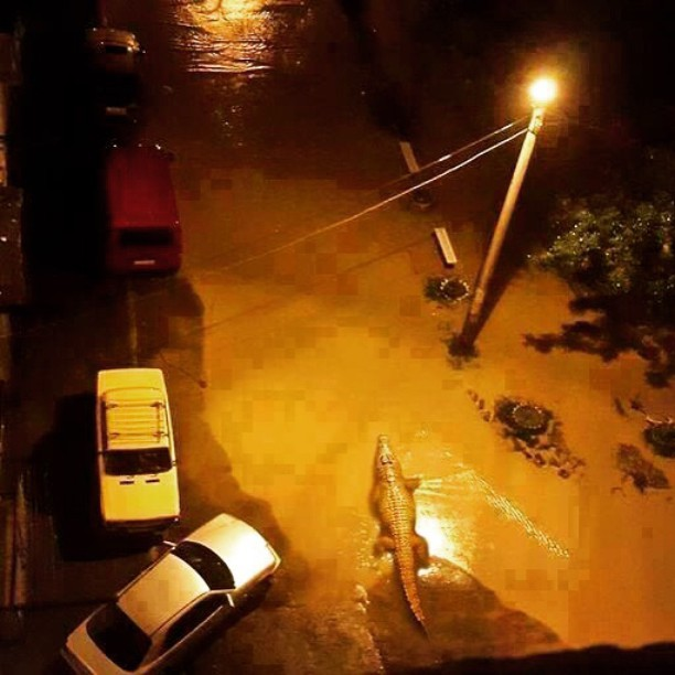 Flooding in Tbilisi