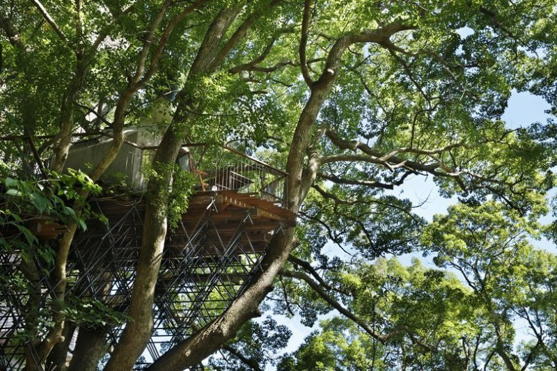 Japan's Largest Treehouse