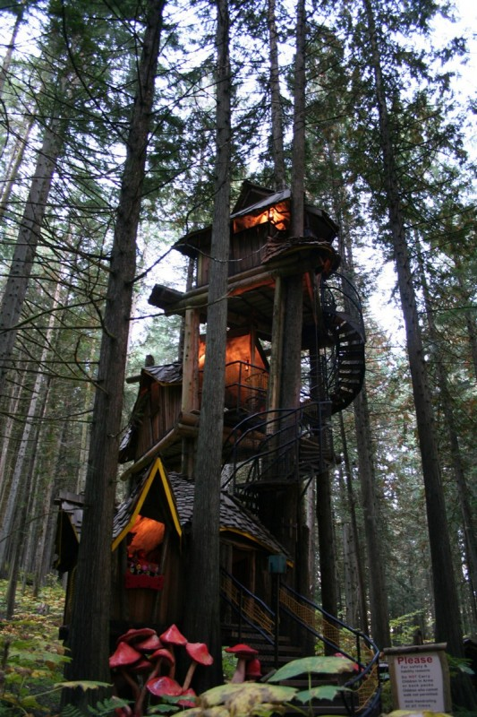 Beautiful treehouses