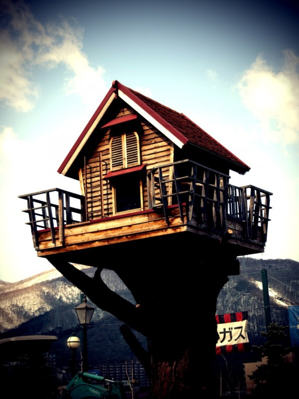 Beautiful treehouses 5