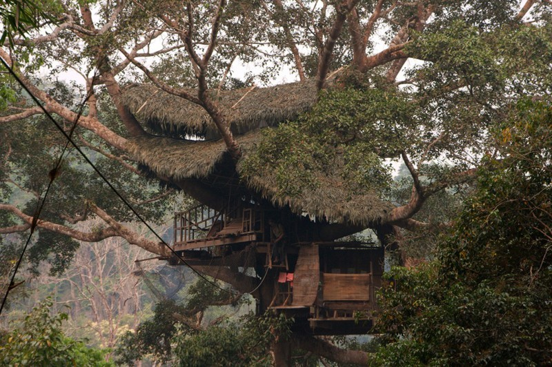 Beautiful treehouses 6