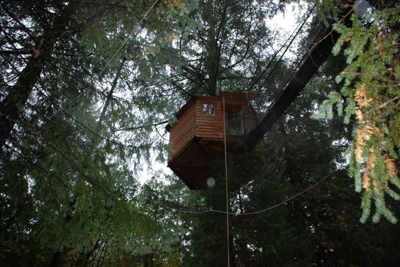Beautiful treehouses 7