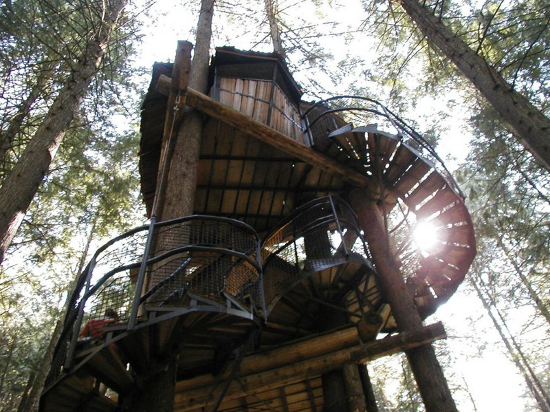 Beautiful treehouses 8