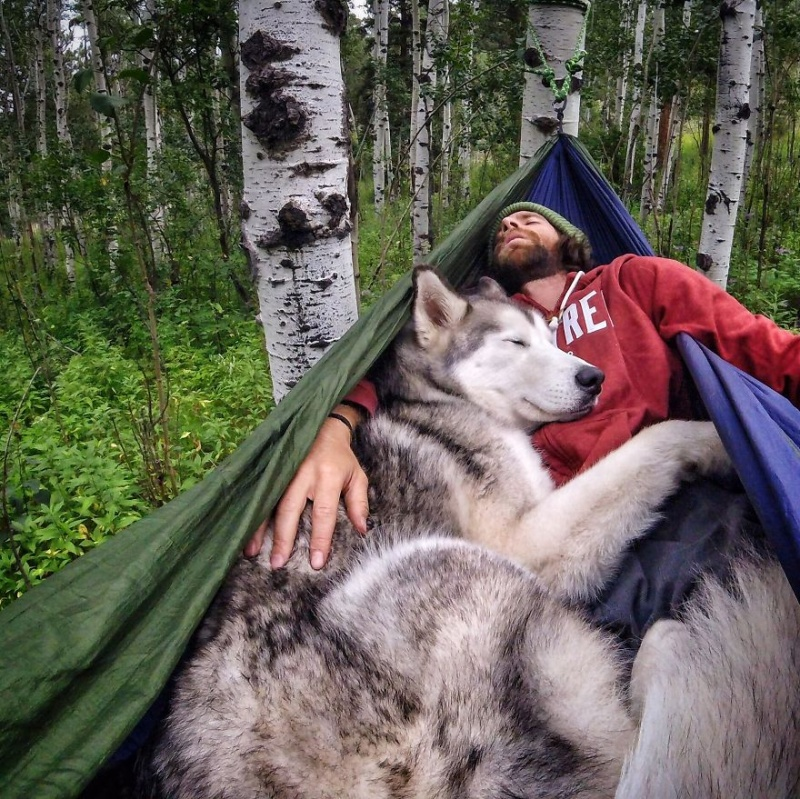 A man travels around the world with his dog 13