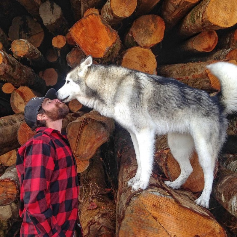 A man travels around the world with his dog 14