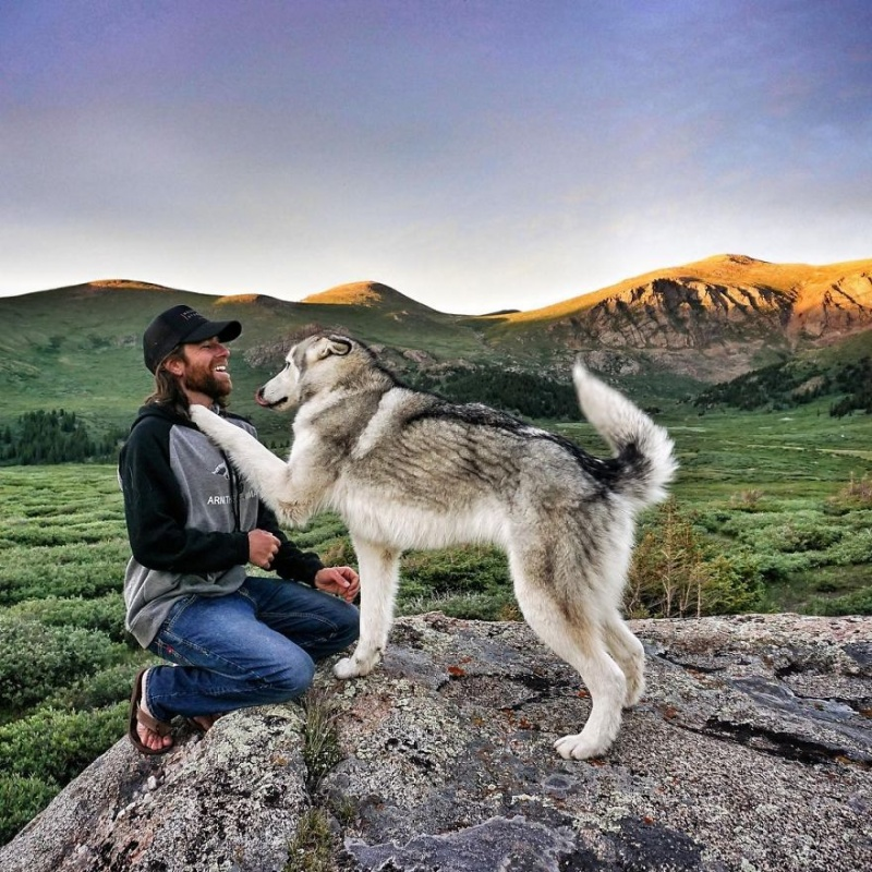 A man travels around the world with his dog 5