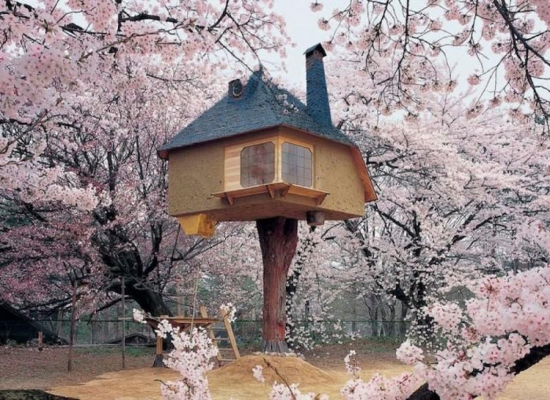 Fantastic houses