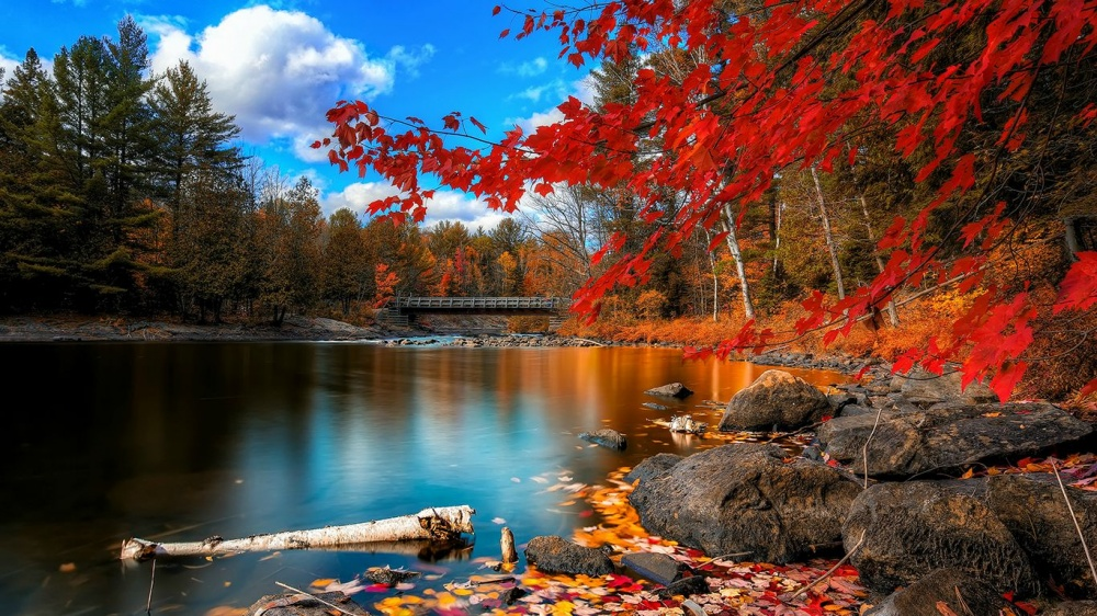 places where autumn is especially beautiful 11