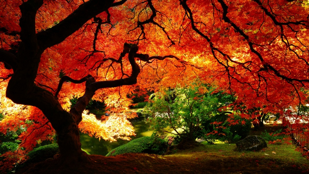 places where autumn is especially beautiful 8