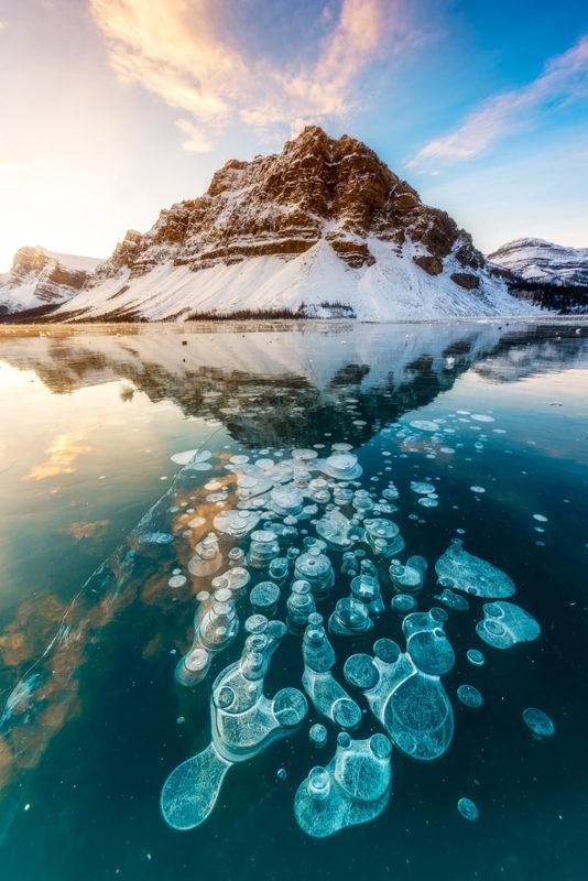 Frozen air bubbles in Lake Abraham