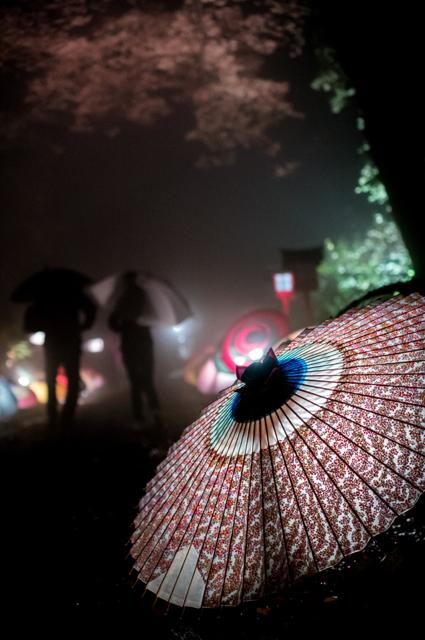 Most beautiful Japanese umbrellas