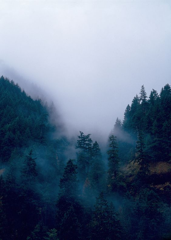 The beauty of mountains blurred by fog