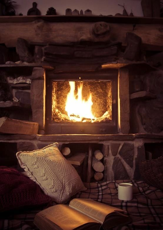The beautiful mixture of fireplaces and books
