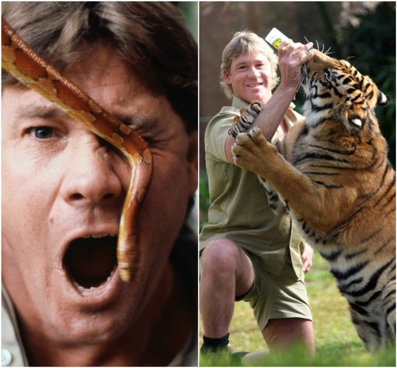 Steve Irwin: Most dangerous moments in the wild